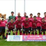 2017 J1リーグ 第30節 セレッソ大阪 vs ヴァンフォーレ甲府