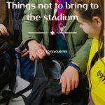 2018FIFAワールドカップ ロシア:スタジアムへの持込禁止物など