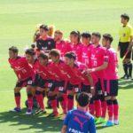 2017 J1リーグ 第14節 セレッソ大阪 vs アルビレックス新潟